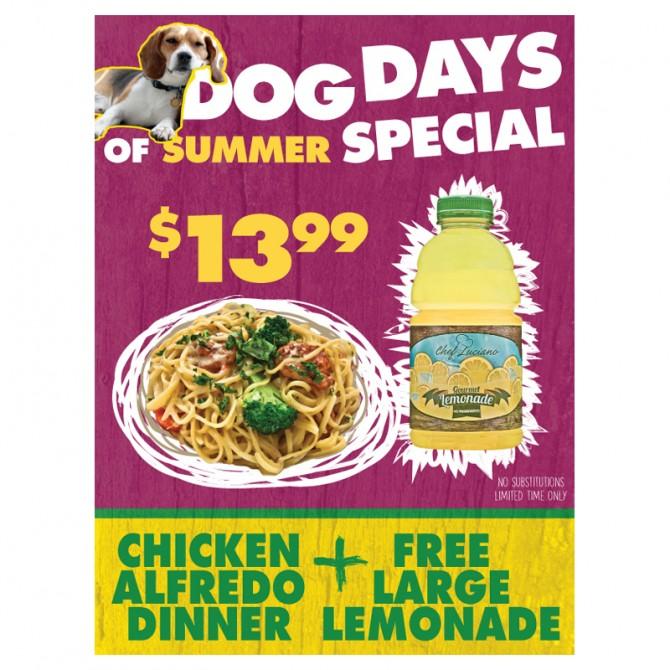 Dog Days of Summer – Poster Design